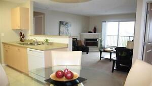 Freeze Frame February: One & Two Bedroom Units Available!