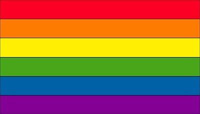 Gay Pride Rainbow Refrigerator Flag Magnet 3.5x2 (Rainbow Refrigerator)