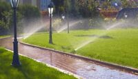 Worker needed to assist in installation of sprinkler systems