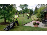 Gardening Services in Dorset