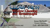 Window and Eavestrough Cleaning