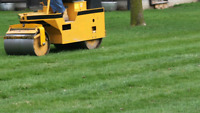 Lawn Rolling Services