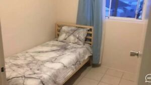 Private/Independent room to rent out in Hillsdale Hillsdale Botany Bay Area Preview