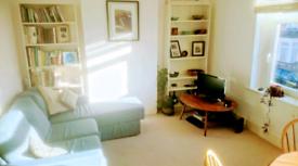 Mon-Fri let: light apartment in cool Canton