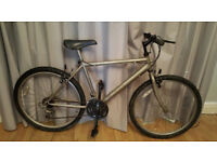 adult raleigh max mountain bike