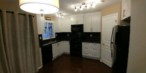 BEAUTIFUL TOWNHOUSE FOR RENT $1400 NO MOWING/SHOVELLING!