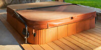 Hot tub Cover special