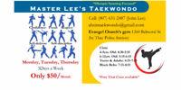 Master Lee's Taekwondo Martial arts school !!!