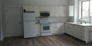2 Bedroom 1 bath walk-out suite in Chilliwack