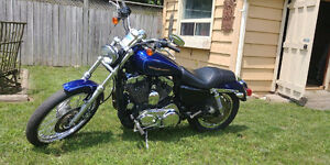 2006 XL1200C sporty CLEAN AND FUN