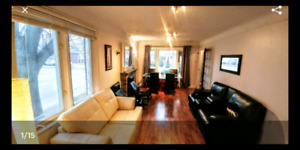 Available April 1st - 3 Bedroom House Prime East Mountain
