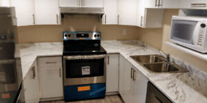 Lively Newly Built Walkout 2 Bedroom Basement Apartment in Ajax