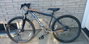 Apollo adult bike
