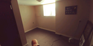Room(1bdr +1bath) for rent in ground level basement suite
