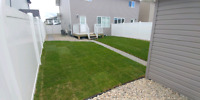 Mucha's landscaping&synthetic grass