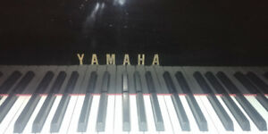 Yamaha C7 Grand Piano