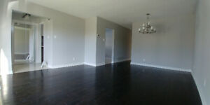 Newly Renovated 3 Bedroom House Available For Rent !