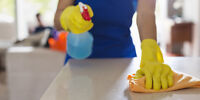 $25 - Eco-Friendly House Cleaning - Dedicated and Reliable