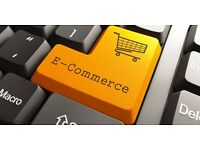 eCommerce website £350.00