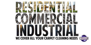 "Professional Upholstery Cleaning ""Sofa+Chair=69.99$"" Peterborough Peterborough Area image 2"