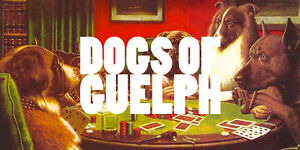 Join dogs of Guelph