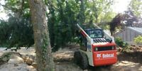 excavator and bobcat for hire
