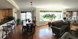 Beautiful, large, downtown condo for rent 2bd + den