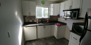 REDUCED PRICE !!!!!Full kitchen Cabinets, Dishwasher, and Sink