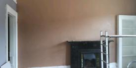 Experienced plasterer