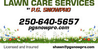 Lawn Care, Dethatching, Aerating