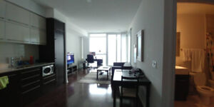 sublet 1bed+1 furnished with parking at Bay&college (Oct20th)