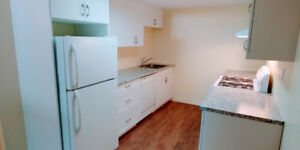 Newly Renovated 1 Bedroom Apartment + Large Den