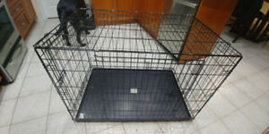 Large Dog Crate (2 Doors) - Pick Up in Brampton
