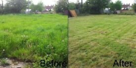 Gardening services-Local gardener-tidy ups - Grass cutting- Cemetery and grave flowers maintenance