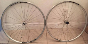 alexrims DA22 double wall mountain bike road tires $100