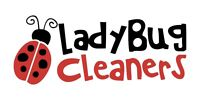 Night Time Cleaner needed 30 HOURS/WEEK  NO WEEKENDS
