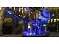 'Jurassic Park' at the Natural History Museum by Time Out Live