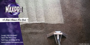 Professional Carpet Steam Cleaning - BEST PRICE GUARANTEED -