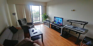 Room Rental in Large Metrotown Apartment