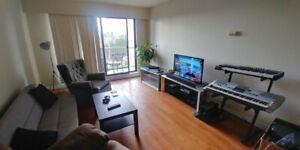 Room Rental in Large Metrotown Apartment