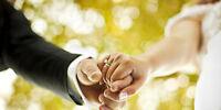 Alliance Weddings - Month-of Wedding Coordination