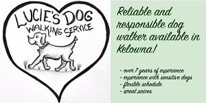 Friendly and Flexible Dog Walker Available!