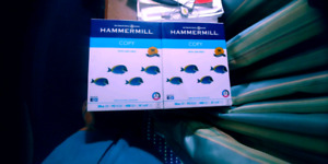 Hammermill Copy papers