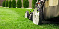 Spring Clean up// Summer Seasonal Lawn Care  service // Book Now