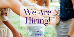 Maternal Support Practitioner (Doula)
