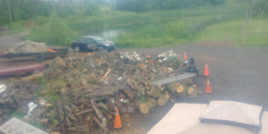 HARDWOOD LOGS $100 PER BUSHCORD