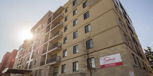 LIVIN THE LOFTY LIFE @ 321 Lester Lofts Kitchener / Waterloo Kitchener Area image 1