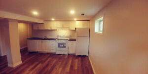 3 Bedroom Newly Built Lower Level Mountain Apartment July 1