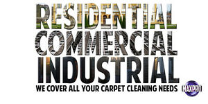 Professional Carpet Cleaning Specials Kawartha Lakes Peterborough Area image 4