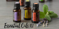 Essential Oils 101 + Roller Ball Make and Take